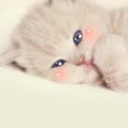 可以抱着我睡、